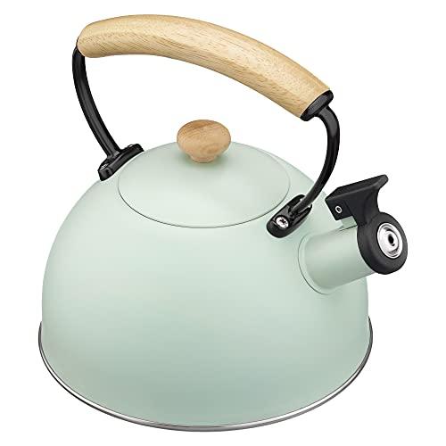 Navaris Hervidor de Agua para fogón - Tetera de Acero Inoxidable con Silbato para Cocina inducción vitrocerámica - Vintage en Color Menta - 20 CM